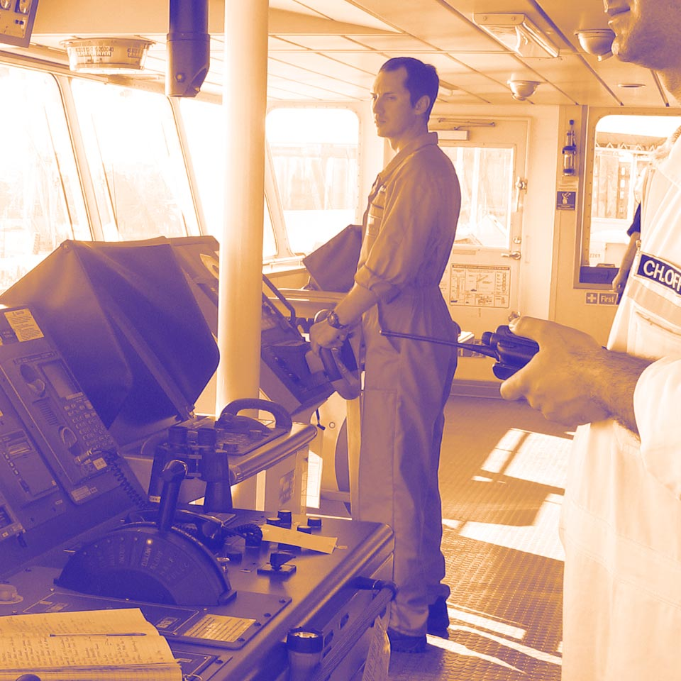 Recruitment for      professional seafarers